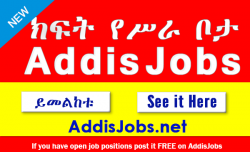 Jobs in ethiopia - addisjobs