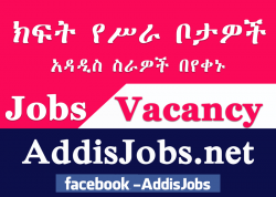 Search Jobs in Ethiopia