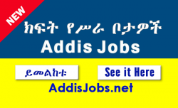 addisjobs-Jobs in ethiopia
