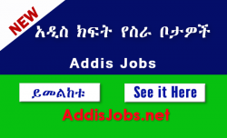 Ethiopian job site-addisjobs