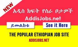 Jobs in Ethiopia
