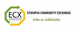 ecx-jobs-addisjobs-vacancy