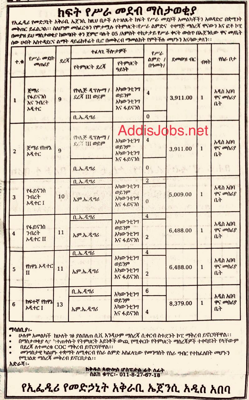 6Jobs for Finance Auditor | Accountant | Auditor | and more | AddisJobs