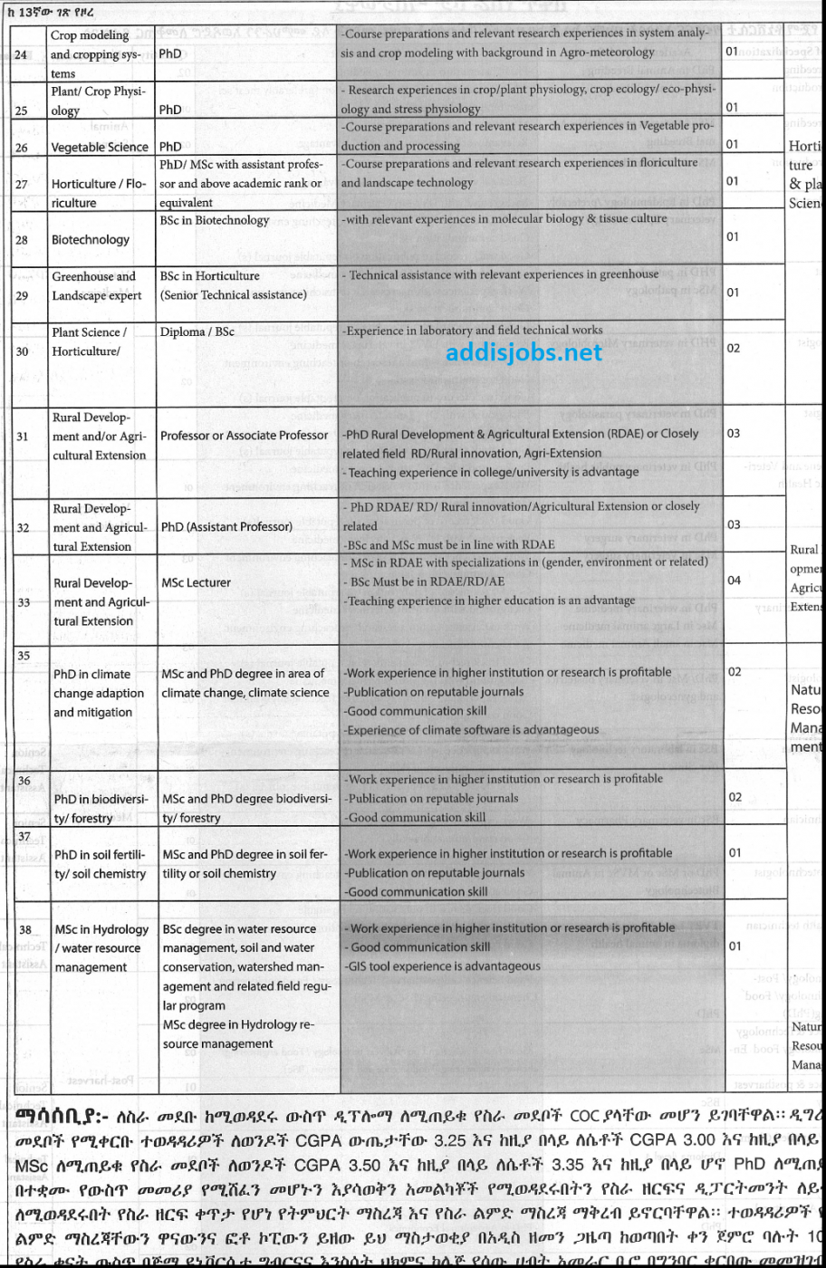 Lecturers at University – 45 Positions | AddisJobs