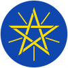 The Federal Democratic Republic of Ethiopia Audit Services Corporation